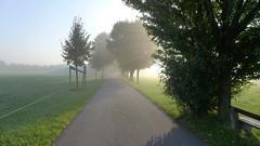 Morgennebel (Aah-Yeah) Tags: nebel morgennebel fog grassau achental chiemgau bayern