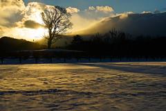 Setting beyond the mountain 5 (@yoshiki) Tags: winter snow sunset sky cloud landscape mountain japan tree wood