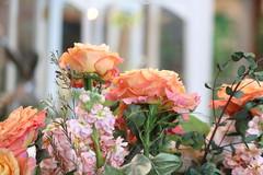 103. Arboretum flower shower (Misty Garrick) Tags: arboretum universityofminnesotalandscapearboretum landscapearboretum flowershow