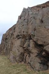 Cliffs,Collieston_Mar 19_450 (Alan Longmuir.) Tags: grampian aberdeenshire collieston cliffs