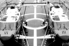 Westland Lynx WG 13 (Laurent Quérité) Tags: canonfrance canonae1 noirblanc blackwhite helicoptere aviation aéronef aéronavale aéronautiquenavale frenchnavy marinenationale militaryaircraft