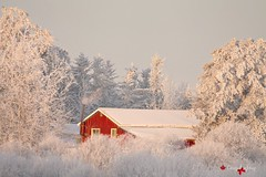 A Good Old Fashion Canadian Christmas! (cowgirlrightup) Tags: sunset redbarn frost canada alberta smoke woodstove cowgirlrightup christmas