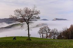 Montecalderaro (Castel S. Pietro T.),  Italy. 23 December 2018 030 (tango-) Tags: montecalderaro castelsanpietro castelsanpietrot bologna emilia italia italien italy italie