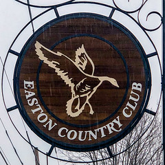 Easton Country Club (Timothy Valentine) Tags: goose squaredcircle sign golf large easton massachusetts unitedstatesofamerica us rain