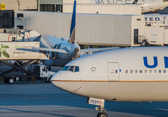 777 female captain (pbo31) Tags: bayarea california nikon d810 color april 2019 boury pbo31 spring sanfranciscointernational sfo sanbruno sanmateocounty spotters airport aviation plane airline over travel united boeing 777 taxi departure cockpit