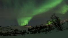 Tromsö 2019 (275 von 699) (pschtzel) Tags: nordlicht norwegen2019 tromso