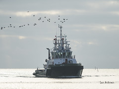 DSC05550 (fotolasse) Tags: karlshamn sony a7r ii natur nature hav see ship långexponering sweden sverige nyacanon5dmark3
