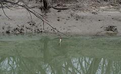 IMG_7164 (jeremy tekell) Tags: cast fishing cork bobber clear creek denton texas