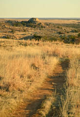 The trail back to the car (radargeek) Tags: oklahoma wichitamountains wildlife reserve february 2019 wichitamountainswildliferefuge grass trail hiking