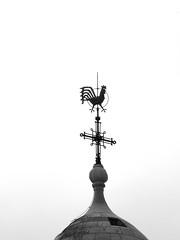 The Rooster of Dormition Abbey (zeevveez) Tags: זאבברקן zeevveez zeevbarkan canon bw silhouette
