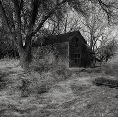 Abandoned Farmhouse, Eastern Washington (austin granger) Tags: farmhouse washington palouse abandoned time impermanence ruin grass winter film square overgrown gf670