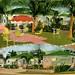 Miami Moon Cottages Vintage Postcard