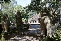 Angkor_Ta Prohm_2014_05