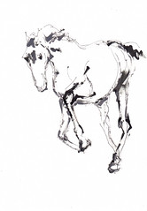 Horse Study - Gallop [20190322] (rodneyvdb) Tags: animal art blackandwhite bw drawing illustration cheval horse horseart ink painting