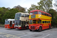 Clydeside RM835 WLT835 (Will Swain) Tags: newport quay during isle wight buses beer walks weekend 2018 12th october hampshire south coast bus transport travel uk britain vehicle vehicles county country england english clydeside rm835 wlt835 wlt 835 rm routemaster