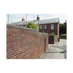 garden walls (chrisinplymouth) Tags: city uk england house brick wall terrace plymouth devon backlane cw69x englishbond princerock diagx urbio xg diagonal