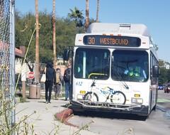February 07, 2019 (103) (gaymay) Tags: california desert gay love palmsprings riversidecounty coachellavalley sonorandesert bus transit westbound bike bicycle