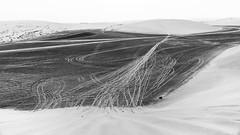 Patterns in the Sand (Torsten Reimer) Tags: horizon sand landscape desert himmel abstract wüste hills cars asia arabia landschaft sanddune katar patterns sky tracks schwarzweis blackandwhite qatar monochrome alwakrahmunicipality qa