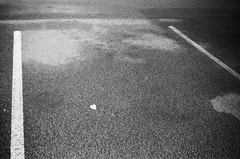 Parking space (Matthew Paul Argall) Tags: kodakstar500af autofocus 35mmfilm blackandwhite blackandwhitefilm ilforddelta100 100isofilm parkinglot
