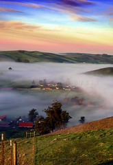 Early Morning Fog  Looking West (Vern Krutein) Tags: california usa earlymorningfogoverthevalley northerncalifornia trees tranquilly geoform bucolic petaluma clouds morning landscape