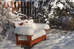 Waiting..... (Katy on the Tundra) Tags: bench snow