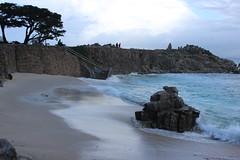 IMG_9765 (mudsharkalex) Tags: california pacificgrove pacificgroveca loverspointpark loverspointbeach beach