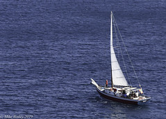 The Savoy outward bound. (MWBee) Tags: yacht caribbeansea sea boat sails stgeorges grenada caribbean mwbee nikon d750