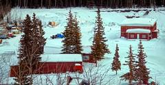 Typical Alaskan Homestead (JLS Photography - Alaska) Tags: alaska alaskalandscape landscape lastfrontier landscapes homestead home cabin jlsphotographyalaska wilderness winter winterlandscape buildings bushalaska digitalmanipulation