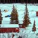 Typical Alaskan Homestead