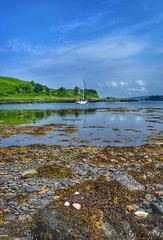 Kerrera (Michelle O'Connell Photography) Tags: scotland isle scottishisland islandofkerrera kerrera oban scenery landscape landscapephotography naturescape naturescenes naturephotography outdoors michelleoconnellphotography
