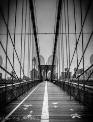 Brooklyn Bridge BW (broadswordcallingdannyboy) Tags: ny usa us america newyork copyright leon reilly eos7d eflens cityscape canon winter creative lightroom metropolis iconic 2019 newyorkcity reflection lights citylights newyorkstateofmind newyorkminute donotcopy leonreilly eastcoast nyc city copyrightleonreillyphotography newyorkwinter february2019 brooklyn bridge brooklynbridge bw blackwhite mononyc mono leonreillyphotography