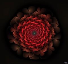 image9_big_46848212794_o (peter.barlow5) Tags: deepstyle fractal apophysis userfrax flower