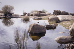 _MG_0417 (zarude79) Tags: pantano piedra