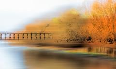 Seaside Pier (beelzebub2011) Tags: usa washingtonstate bellingham pier seaside trees multipleexposure icm
