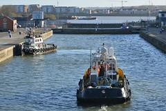 Haven Supporter (2) @ KGV Lock 08-01-19 (AJBC_1) Tags: london workboat predatorcharters ©ajc dlrblog ship boat vessel england unitedkingdom uk northwoolwich eastlondon newham londonboroughofnewham nikond3200 royaldocks londonsroyaldocks damen1500pushycat ajbc1 greatbritain gb tug havensupporter collinswateragelighterage marineengineering tugboat stantug1205 damen damenshipyardsgroup docklands kgvlock kinggeorgevlock assassin