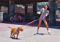 Nice walk (Sunset Beach Buzz) Tags: buzzfotoz girl teen woman cute pretty shorts legs dog em1markii olympus