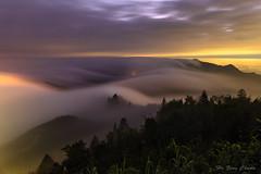 隙頂傳說_DSC7917NN (何鳳娟) Tags: 隙頂 流瀑 雲瀑 二延坪登山步道 山岳 夜景 台18縣道 阿里山公路