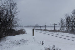 February (joeldinda) Tags: cloud poles wire sky mulliken village tree february g9x 4461 railroad track fields michigan powershotg9xii canon weather snow 2019 winter 44365