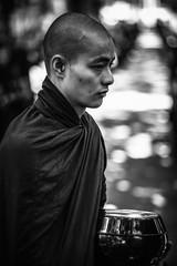 Monk (wilsonchong888) Tags: leicaaposummicronm90mmf2asph m10 leica streetphotography black white burma myanmar mandalay monasticcollege buddha monk lunch amarapura colour asia