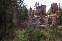 paper mill ruins (primemundo) Tags: ruinsinthewoods pinebarrens nj njpinebarrens harrisville ruins abandoned ghosttown bassrivertownship decayed