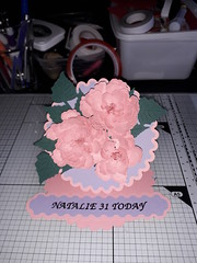 20190115_115244 (noelm-t) Tags: cards cardmaking papercraft