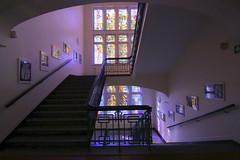 Gymnasium ALLEE Altona (Elbmaedchen) Tags: staircase stairs stairwell stufen violett blau interior treppenhaus treppe schule altona architektur farbglasfenster aufgang gymnasiumallee farbig colours