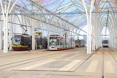 2019-03-03, Lódz, Piotrkowska Centrum (Fototak) Tags: tram strassenbahn lódz poland pesa düwag konstal ligne11b ligne8 ligne14 ligne7b 1858 1873 2244 302
