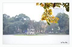SHF_8238 (Tuan Râu) Tags: 1dmarkiii 14mm 100mm 135mm 1d 1dx 2470mm 2019 50mm 70200mm canon canon1d canoneos1dmarkiii canoneos1dx hanoi landscape trees water sunshine sun tuanrau tuan tuấnrâu2019 râu httpswwwfacebookcomrautuan71