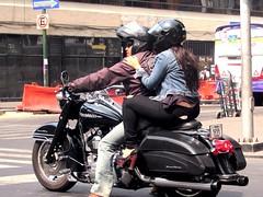 Road King (thomasgorman1) Tags: motorcycle harley biker man woman people street intersection signs urban city mexico canon