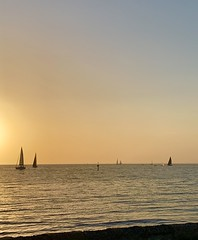 Summer sunset at Brighton (Marian Pollock) Tags: australia melbourne victoria summer sky portphilipbay brighton beach sailingboats horizon sunset sun silhouette dusk shoreline water serene