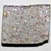 Ordinary chondrite (New Concord Meteorite) 3