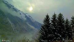 IN GIRO PER L'EUROPA (Salvatore Lo Faro) Tags: paesaggio svizzera europa alpi montagne nebbia alberi nuvole sole natura nature salvatore lofaro canon g16
