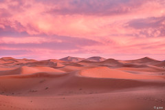 Desert pink (g.zaz) Tags: merzouga d750 nikon desert morocco pink landscape trip pinkhour 2470mm sunset sand calmness