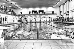 3 or 4 (kceuppens) Tags: swimming swim zwem zwemmen sports sport zwembad water black white bw blackandwhite zwart wit zwartwit nikond810 nikon d810 nikkor247028vr nikkor 2470 pool